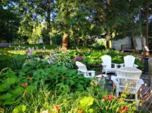 How Landscaping Can Make Your Property Worth More
