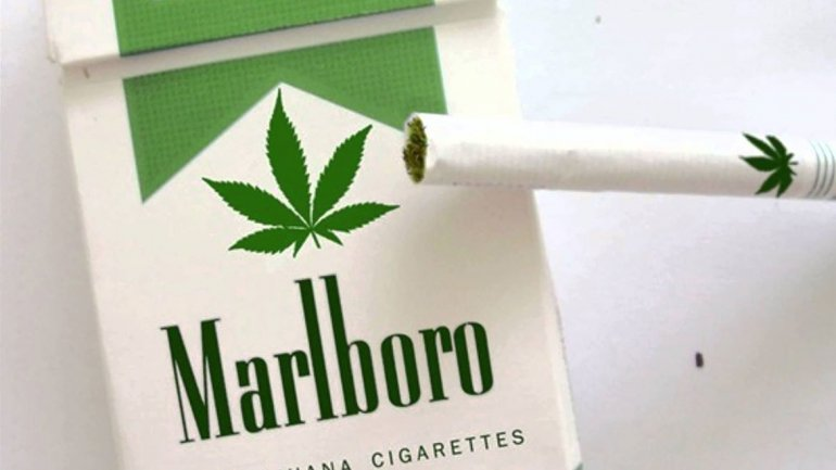 Marlboro Owner Altria Invests $1.8 Billion In Cannabis Company Cronos