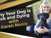 Why Your Dog is Sick and Dying with Karen Neola_V2