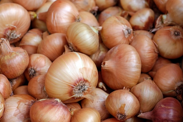 Onions and Onion-Containing Products